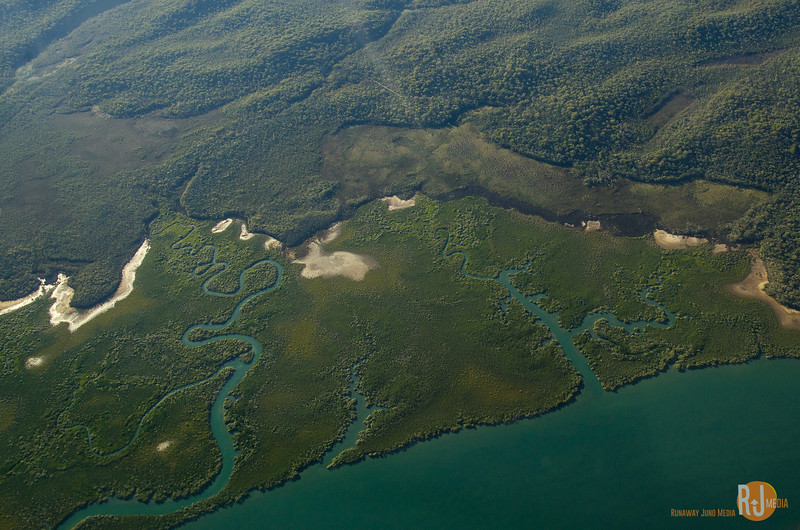 Australia-queensland-lady elliot island-6008.jpg