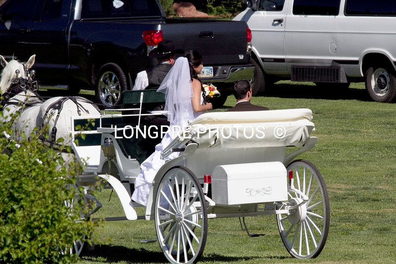 Bride and groom leaving ceremony in horse drawn carriage.
