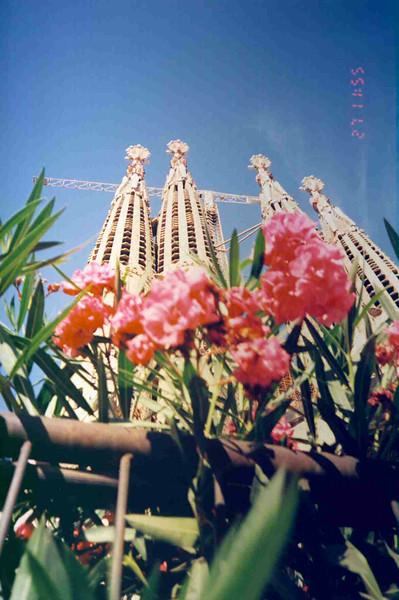 Sagrada Familia Back View.jpg