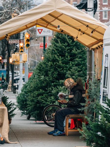 West village trees salesman.jpg