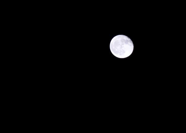 Moon night, 05.04.2007