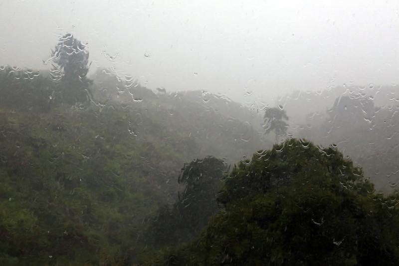 Rain_Window_01.jpg