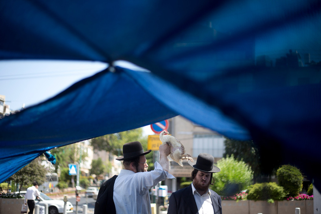 . An Ultra-Orthodox Jewish man swings a chicken over his son\'s head, as part of the Kaparot ritual, in the Ultra-Orthodox city of Bnei Brak near Tel Aviv, Israel, Wednesday, Sept. 11, 2013. (AP Photo/Ariel Schalit)