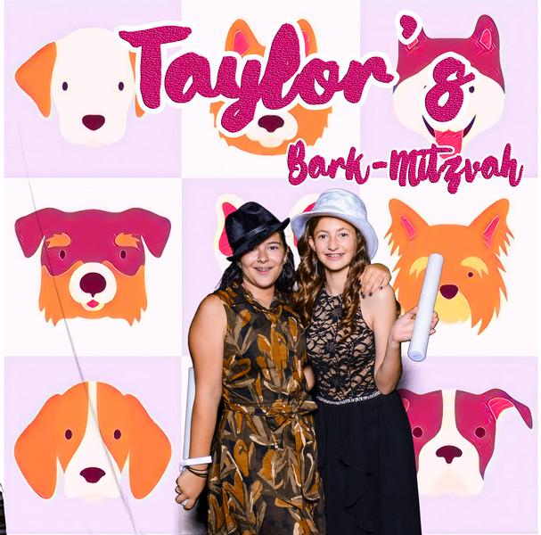 Taylors pawmitzvah-20841.jpg