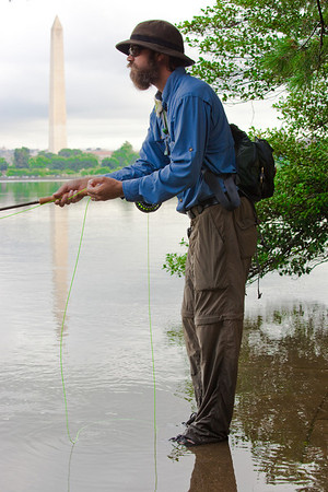Fly Fishing in the Tidal Basin
