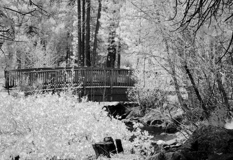 tahoe-2001.jpg