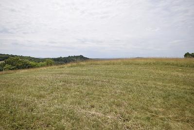 Brooklfield Farms (1/2)