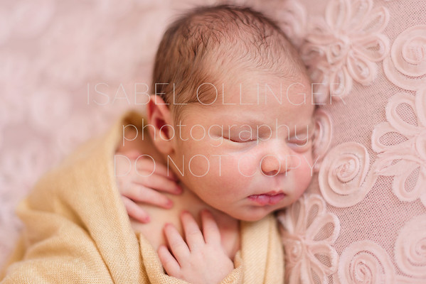 Newborn Portraits - Lifestyle & Portrait