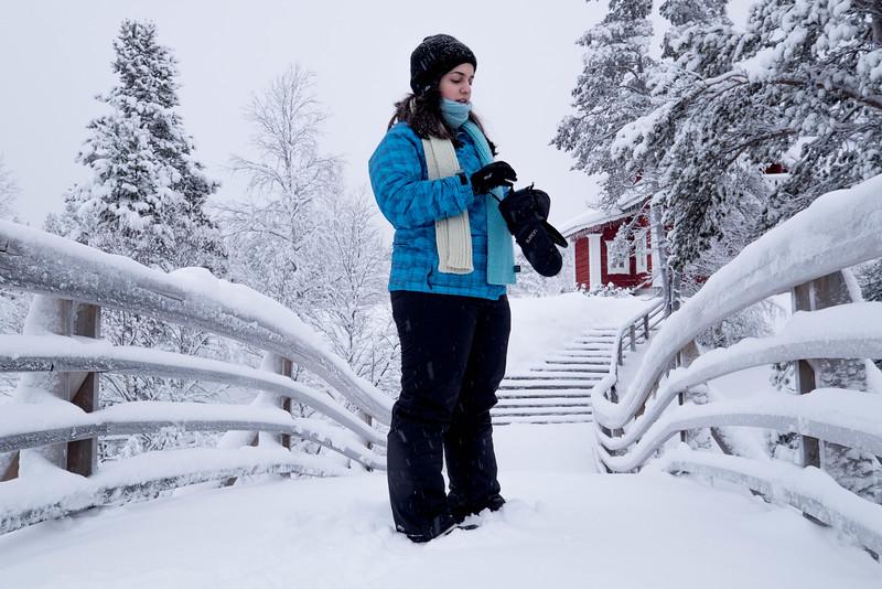 Finland_160116_6.jpg