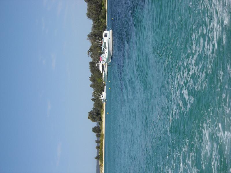 Sydney trip and Mirimbula 111.JPG