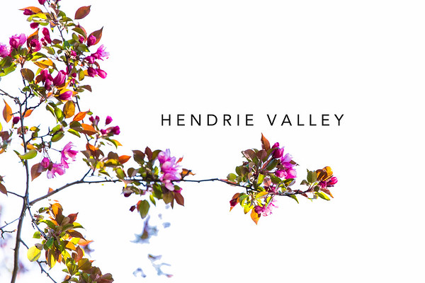 Hendrie Valley