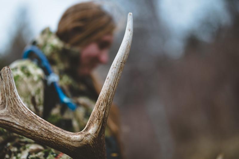 Malia Frame (malia_f) with a fresh elk antler. Washington State. 4/1/18