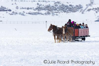Sleigh Ride in Teton