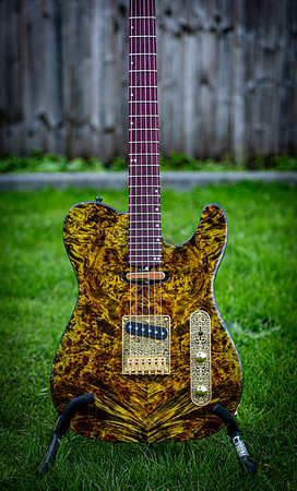RSG - Telecaster - The Shiny Yellow One