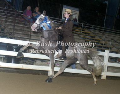 CLASS 33  YOUTH 17 & UNDER SHOW PLEASURE