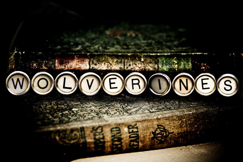typewriter wolverines keys photograph photography michigan lilacpop-1.jpg