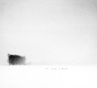 Winterly Haiku