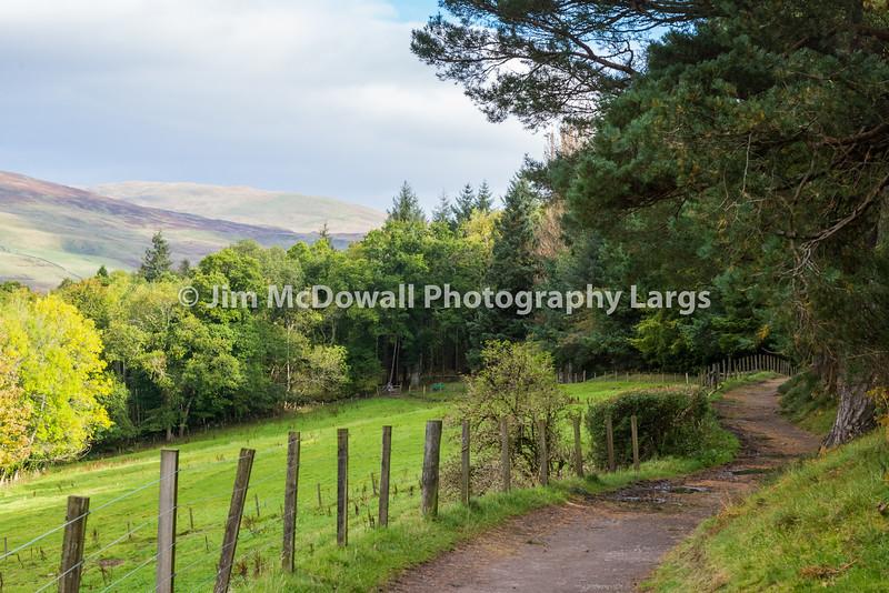 Scottish Country lane Crieff in Scotland