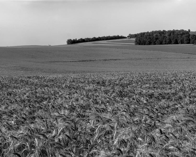 Marne-En-Chambre-10.jpg