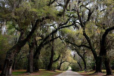 Greater South Carolina