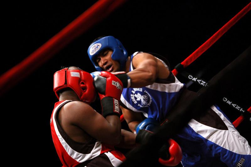boxer14.JPG
