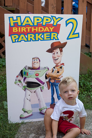 Parker's 2nd Birthday Party