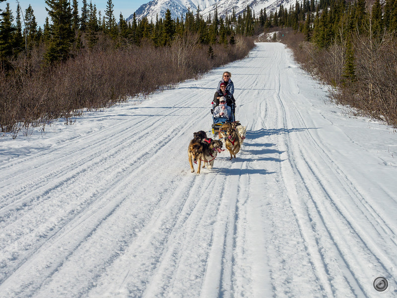 20190326_alaska_trip_alpine_creek_lodge_3541.jpg