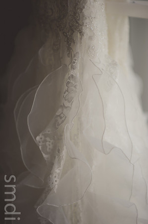 Dryden Dress Shop- Bridal Portraits