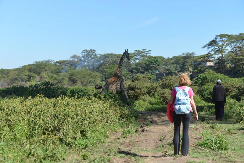 East Africa Safari 154.jpg