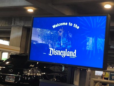2021-03-19 - DLR News and Info - A Touch of Disney