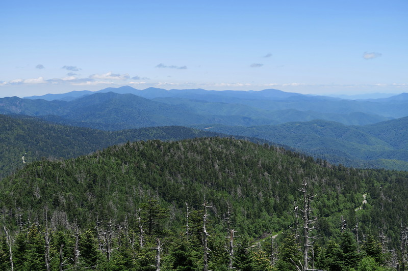 MST - Clingmans Dome to Fork Ridge  (4.0 miles; d=5.40)