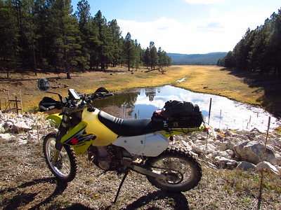 Zuni Mtns. - Rice Park-Tusas Mesa area DS Ride  11-7-16
