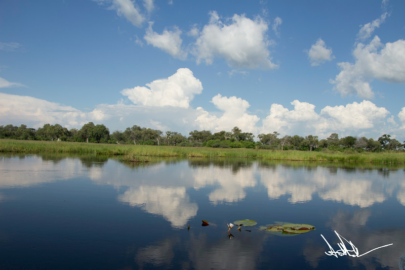 Botswana LandscapeS-4.jpg