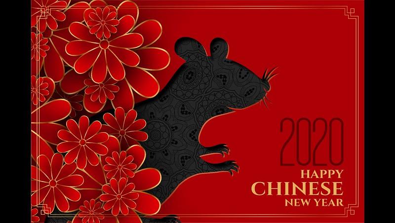 Happy New Year from Albany NY