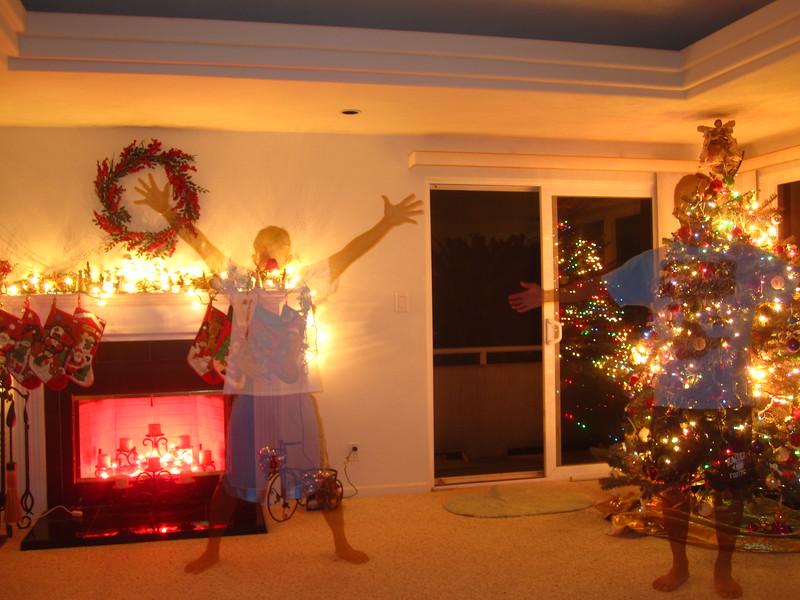 Hawaii - Playing with Light Christmas-3.JPG