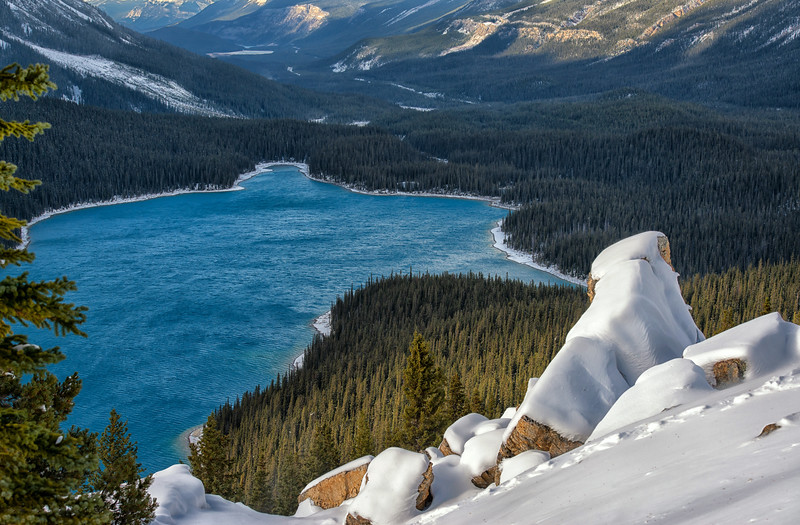 The Head of Peyto Lake