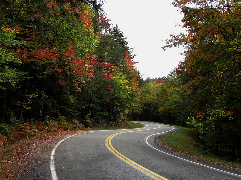 Forest Home Rd - downhill into a series of 7 linked S-turns
