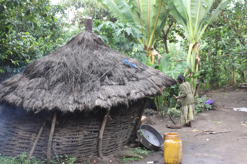 Ari village