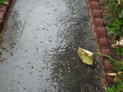 5/22 - Little bit of hail