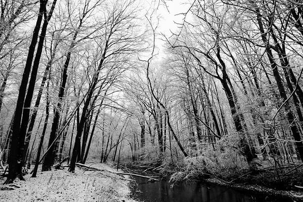 First Snowfall - 11/21/15