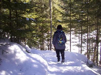 Forêt Montmorency 2002 ou 2004