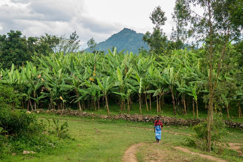 Musanze-Rwanda-16.jpg
