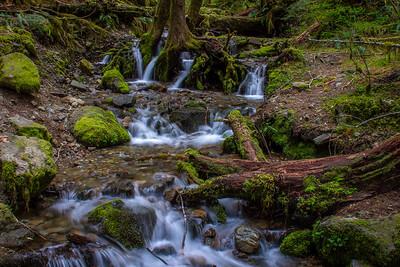Opal Creek 2018