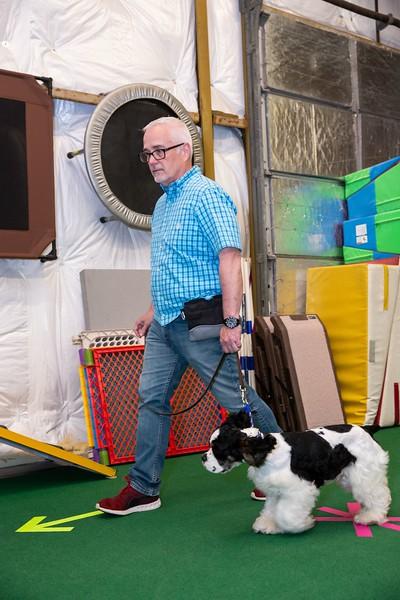 on Command dog Training June 2019-5133.jpg