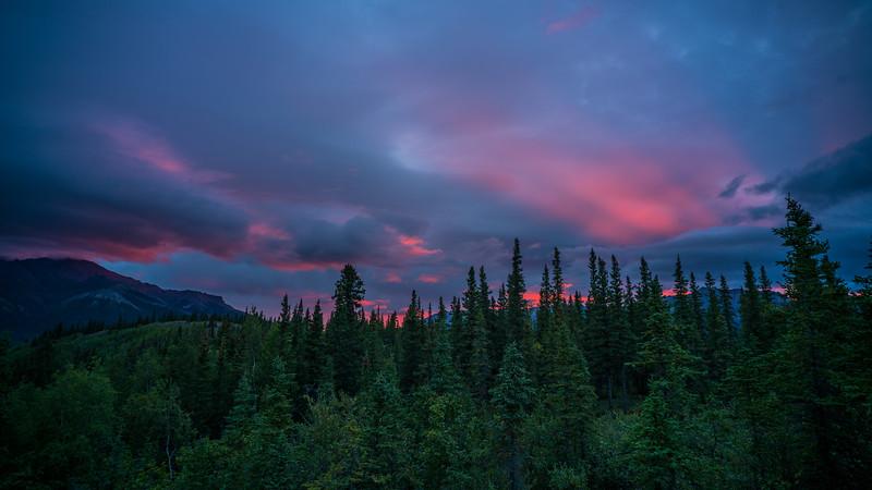Denali National Park Backpacking - 0061.jpg