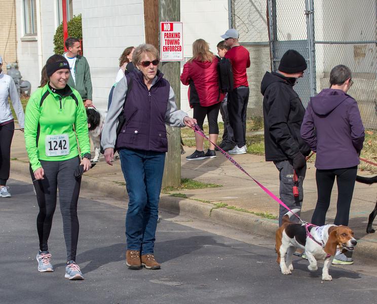 Richmond Spca Dog Jog 2018-446.jpg