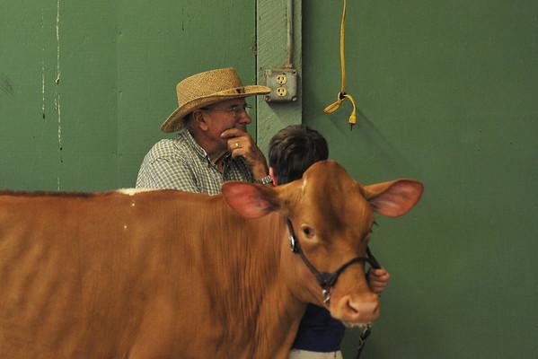 Junior Dairy Show