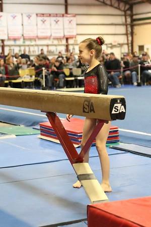 Arcadia Gymnastics / S2