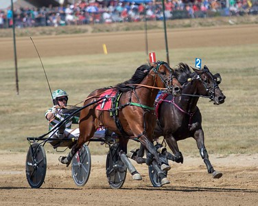 Race 8 DCF 9/19/19 Old Oaken Bucket