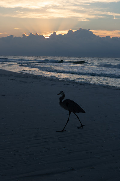 sunrise2-8132.jpg